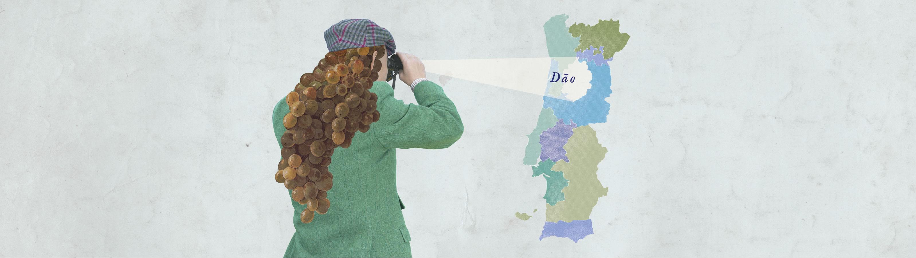 Verken de regio's: